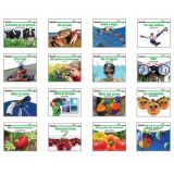 Science Content-Area Sight Word Readers, Spanish, 16 titles