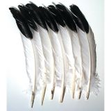 Imitation Eagle Feathers