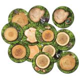 Forest Floor PhotoFun Stow-N-Go™ Seating Stumps, 16 Round, Set of 12