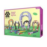 Animal Magnetism Magnet Friends Big Pack: Wildlife